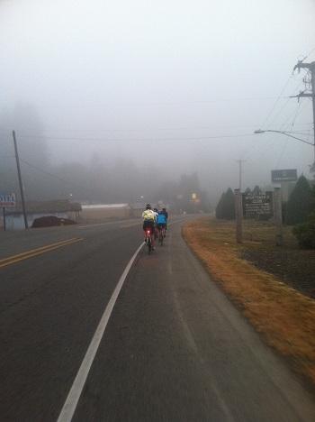 Bike for Freedom: Forks